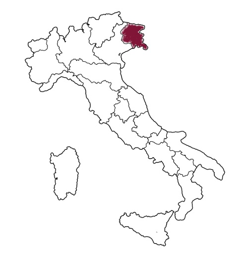 all regions on administration map of italy with flags